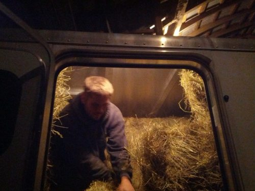 Packing hay for the Aiken stay