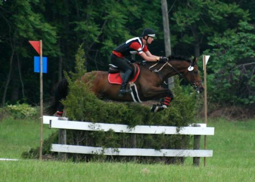 steeple chase2